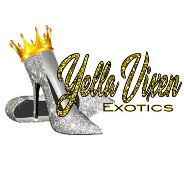 Yella Vixen Exotics